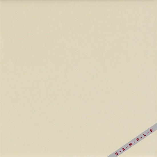 MATTE SAND DOLLAR (1) 0067