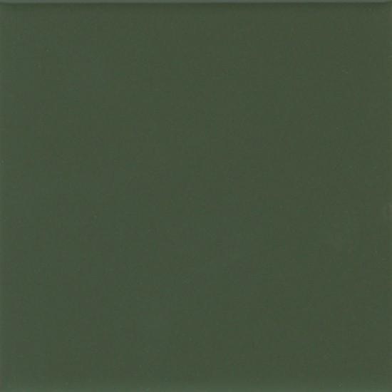 MATTE DILL PICKLE (2) 0066