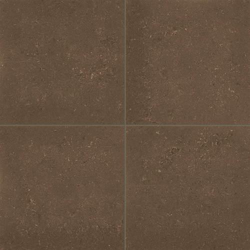Brown AC09