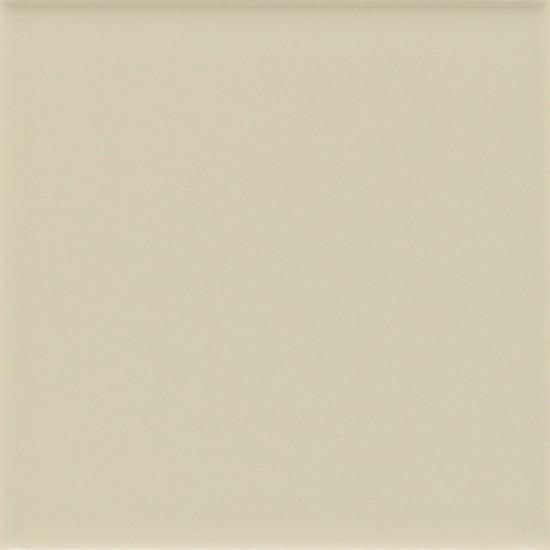 SAND DOLLAR (1) 0050