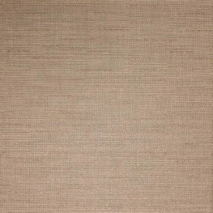 TAUPE FABRIC IF52